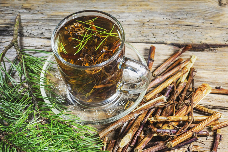 Отвар сосны: рецепт из хвои, шишек, почек, коры, веток, польза и вред для здоровья