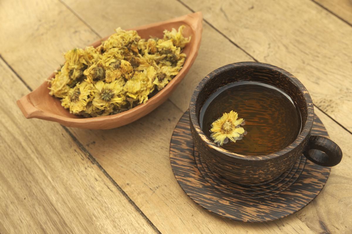 чай из хризантемы польза