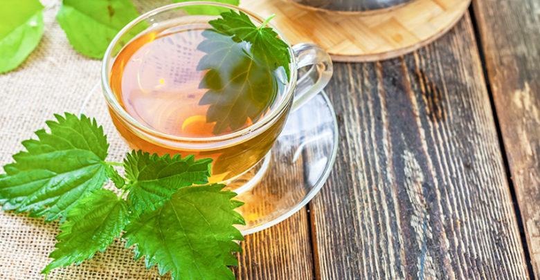 Картинки по запросу Чай из крапивы